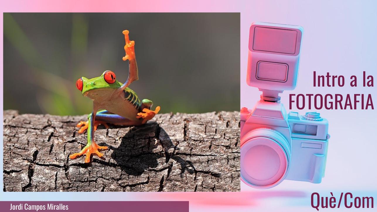 Intro a la fotografia (en Nearpod)